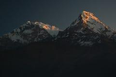Пик Annapurna в восходе солнца Гималаи Непал Взгляд от холма Poon Стоковое Изображение RF