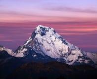 Пик Annapurna южный, Непал Гималаи Стоковое Изображение RF