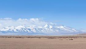 Пик Gurla Mandhata и табун kiangs в Тибете, Китае Стоковые Фотографии RF