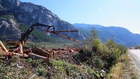 Пиломатериал lifter тимберса места обработки древесины moving видеоматериал