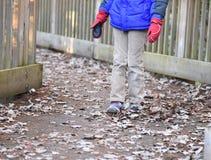 Пинать листья падения стоковая фотография