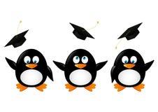 Пингвины студента иллюстрация штока