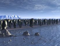 пингвины Стоковая Фотография