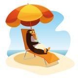 Пингвин на пляже с коктеилем Стоковое Фото
