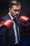 Пинк-боксер в formalwear Стоковое Изображение RF