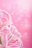 пинк гиацинта цветка Стоковое фото RF