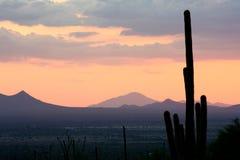 пинк горы высочества Стоковое фото RF