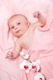 пинк девушки ткани младенца красивейший Стоковые Изображения