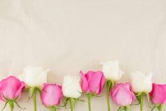 Пинк и белые розы на белой ткани муслина Стоковые Изображения RF