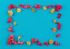 Пинк и желтый цвет высушили рамку границы заводов цветка прямоугольную на голубой предпосылке Взгляд сверху, плоское положение Стоковая Фотография RF