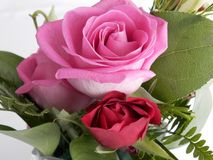Пинк и красные розы, конец вверх по arrangment цветка Стоковые Изображения RF