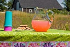 пинк лимонада стоковые фотографии rf