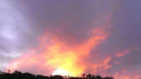 Пинк облаков желтый Стоковое фото RF