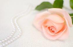 Пинк поднял с шариками perl Селективный фокус День матери или Валентайн стоковое фото rf