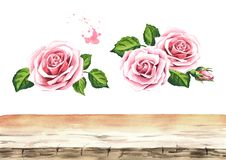 Пинк поднял элементы предпосылки цветка Конструируйте элементы для карточек, приглашений и ткани Иллюстрация акварели нарисованна бесплатная иллюстрация