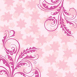 пинк предпосылки декоративный флористический Стоковое фото RF