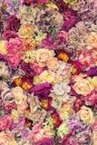 пинк предпосылки флористический Стоковое Изображение