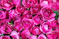Пинк предпосылки букета роз, Стоковая Фотография