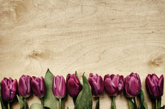 Пинк, пук тюльпанов на светлой предпосылке переклейки Стоковое Фото
