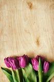 Пинк, пук тюльпанов на светлой предпосылке переклейки Стоковое Изображение RF
