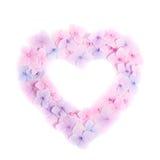 пинк сердца цветка Стоковые Изображения RF