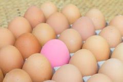 Пинк сохранил яичко и свежие яичка Стоковое фото RF