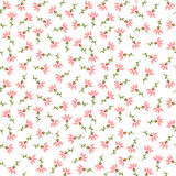 Пинк цветет безшовная картина Стоковая Фотография RF