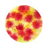 Пинк цветет цветки акварели в круге Стоковое Изображение