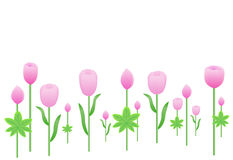 пинк цветка свежий Иллюстрация вектора