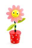 пинк цветка смешной Стоковые Фото