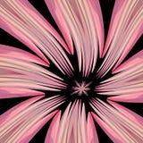 пинк цветка бесплатная иллюстрация