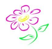 пинк цветка Иллюстрация штока