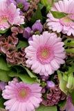 пинк цветков букета различный Стоковые Фото