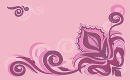 пинк цветков Стоковое фото RF