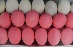 Пинк яичка - сохраненное яичко Стоковая Фотография RF