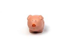 Пинк Piggy на белой предпосылке Стоковое фото RF