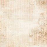 Пинк striped огорченная флористическая предпосылка Стоковые Изображения