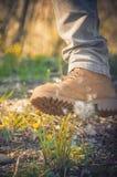 Пинок ботинка человека одуванчик Стоковая Фотография RF