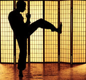 Пинок fu Kung Стоковая Фотография