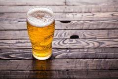 Пинта светлого пива стоковые фото