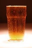 пинта lager Стоковые Фотографии RF