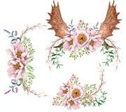 Пионы акварели цветут букеты и флористические antlers оленей Стоковое Изображение