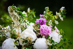 Пионы букета пиона, розовых и белых Стоковые Изображения