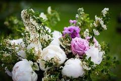 Пионы букета пиона, розовых и белых Стоковое Изображение