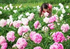 Пионы цветков женщины брюнет пахнуть Стоковые Изображения RF