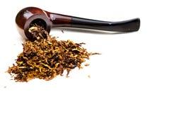 Пипа Tabacco стоковая фотография