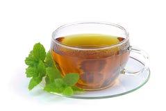 Пипермент 01 чая Стоковые Фото