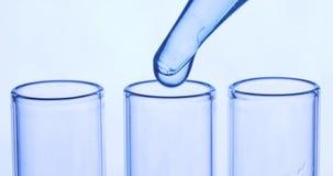 Пипетка капает прозрачные голубые химикаты в 3 пробирки Концепция химиката и медицины видеоматериал