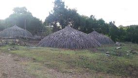 Пирамида древесин стоковые фото
