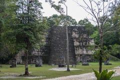 Пирамида и висок в парке Tikal Sightseeing объект в Гватемале с майяскими висками и руинами церемонии Tikal старое Стоковая Фотография RF